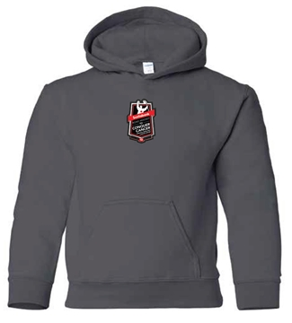 Picture of Youth Hooded Sweatshirt